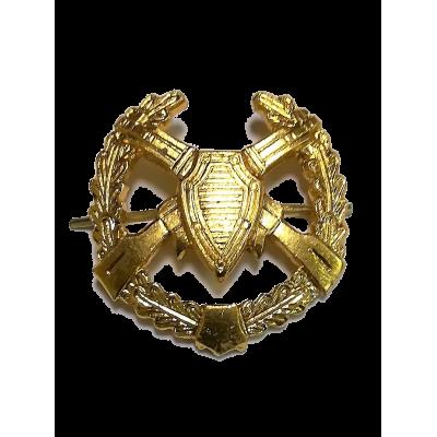 Петличный знак ПВ старого образца, золотой (5-2-040)