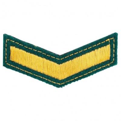Шеврон (курсовка) 1 курс, вышивка, зеленый (7-3-002)