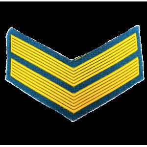 Шеврон (курсовка) 2 курс, пластизоль, голубой (7-3-037)