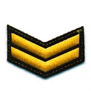 Шеврон (курсовка) 2 курс, вышивка, черный (7-3-010)