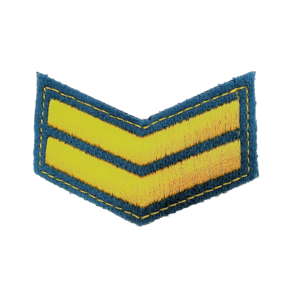 Шеврон (курсовка) 2 курс, вышивка, голубой (7-3-041)
