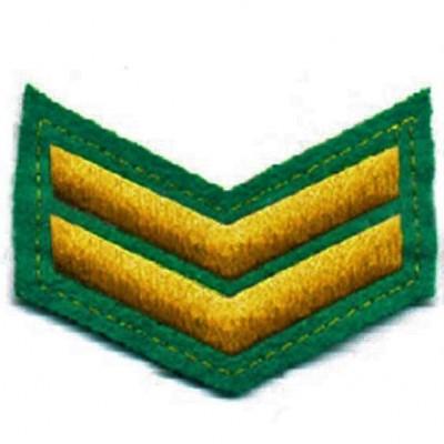Шеврон (курсовка) 2 курс, вышивка, зеленый (7-3-009)