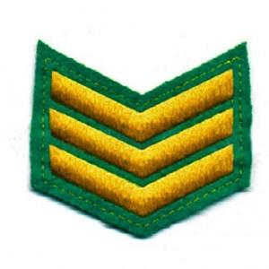 Шеврон (курсовка) 3 курс, вышивка, зеленый (7-3-016)