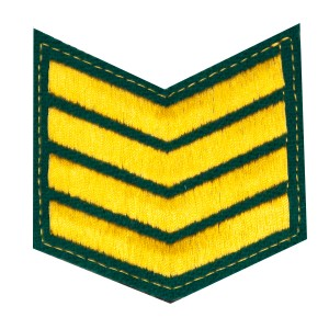Шеврон (курсовка) 4 курс, вышивка, зеленый (7-3-023)