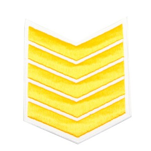 Шеврон (курсовка) 5 курс, вышивка, белый (7-3-032)