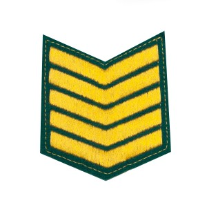 Шеврон (курсовка) 5 курс, вышивка, зеленый (7-3-030)